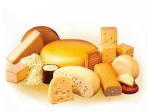 insumos para quesos